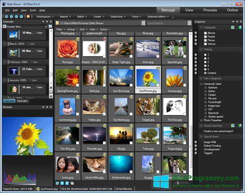 Скриншот программы ACDSee для Windows 8
