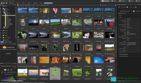 Скриншот программы ACDSee Pro для Windows 8