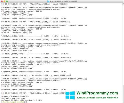 Скриншот программы Wget для Windows 8