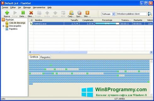 Скриншот программы FlashGet для Windows 8