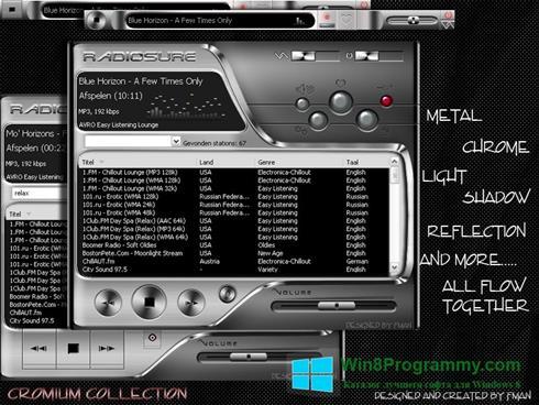 Скриншот программы RadioSure для Windows 8