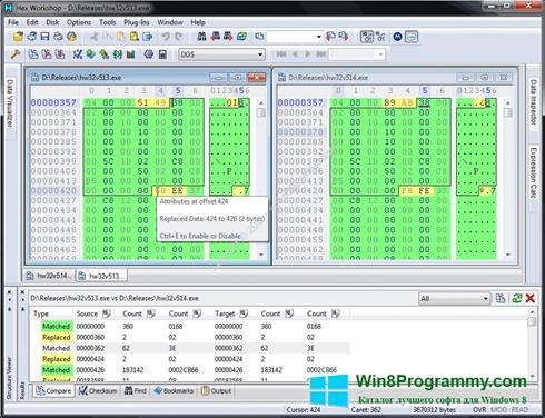 Скриншот программы Hex Workshop для Windows 8