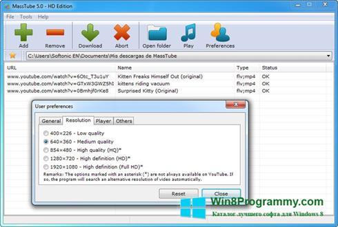 Скриншот программы MassTube для Windows 8