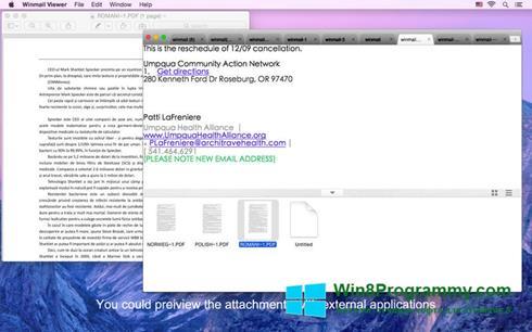 Скриншот программы Winmail Opener для Windows 8