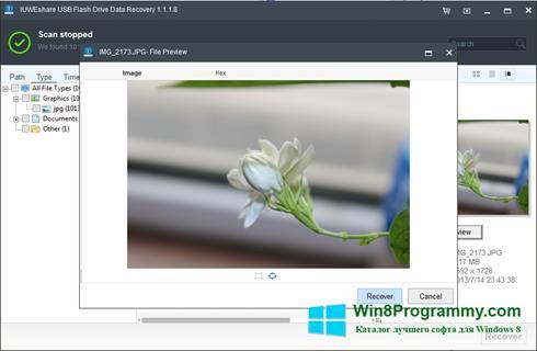 Скриншот программы USB Flash Drive Recovery для Windows 8