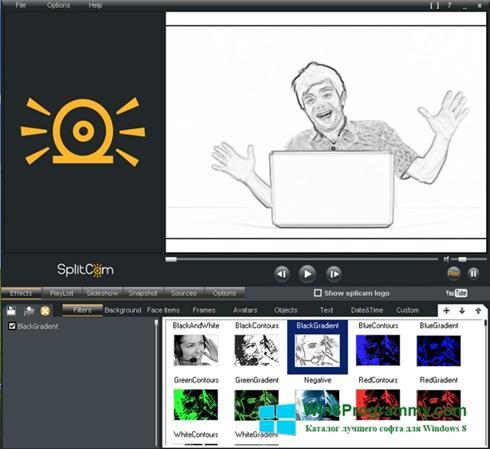 Скриншот программы SplitCam для Windows 8