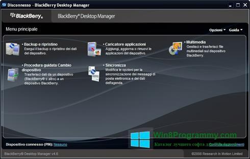 Скриншот программы BlackBerry Desktop Manager для Windows 8