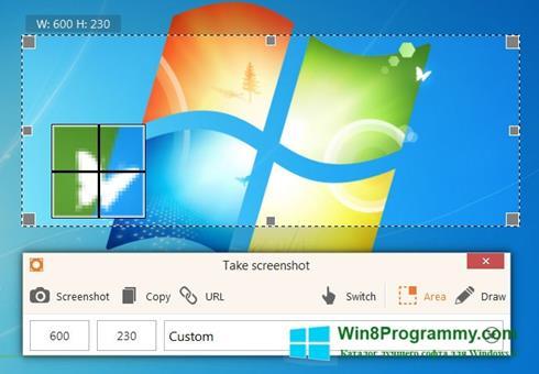 Скриншот программы ScreenShot для Windows 8