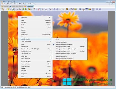 Скриншот программы XnView для Windows 8