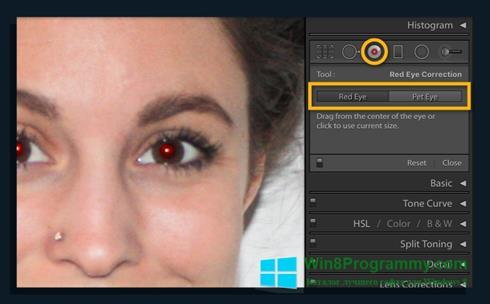 Скриншот программы Red Eye Remover для Windows 8