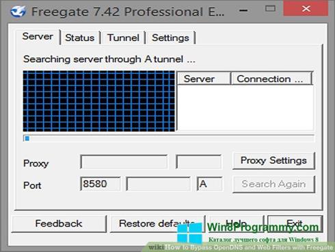 Скриншот программы Freegate для Windows 8