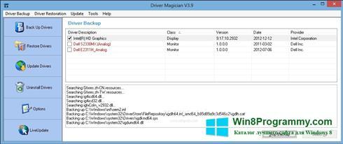Скриншот программы Driver Magician для Windows 8