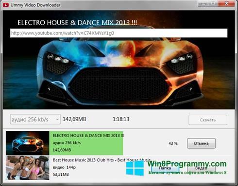 Скриншот программы Ummy VIdeo Downloader для Windows 8