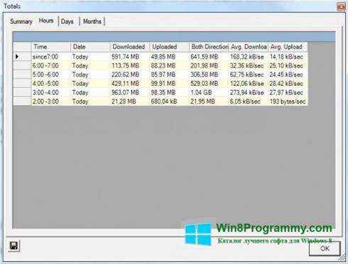 Скриншот программы BitMeter для Windows 8