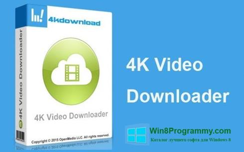 Скриншот программы 4K Video Downloader для Windows 8