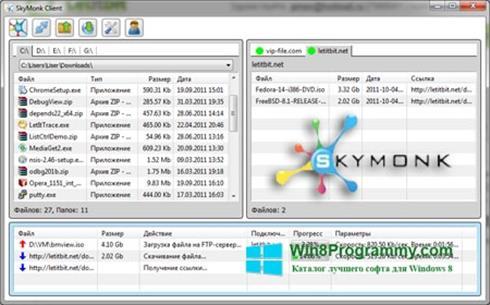 Скриншот программы SkyMonk для Windows 8