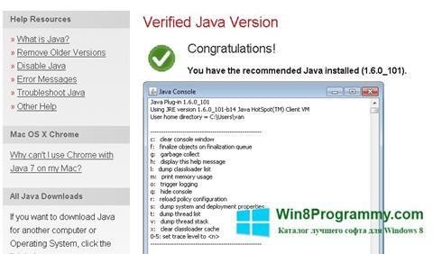 Скриншот программы Java для Windows 8