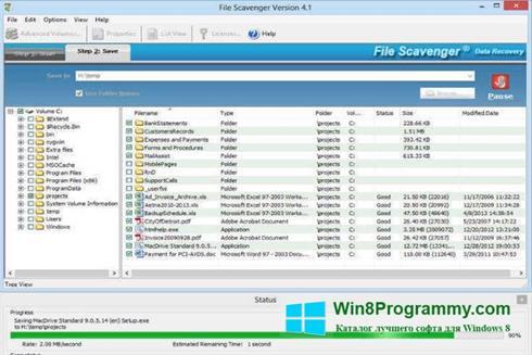 Скриншот программы File Scavenger для Windows 8