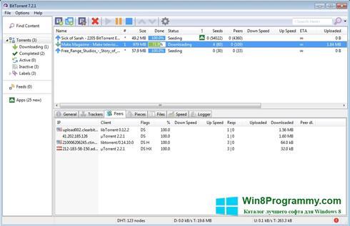 Скриншот программы BitTorrent для Windows 8