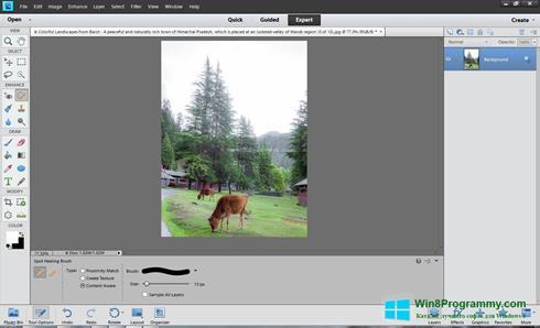 Скриншот программы Photoshop Elements для Windows 8