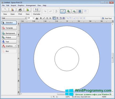 Скриншот программы EPSON Print CD для Windows 8