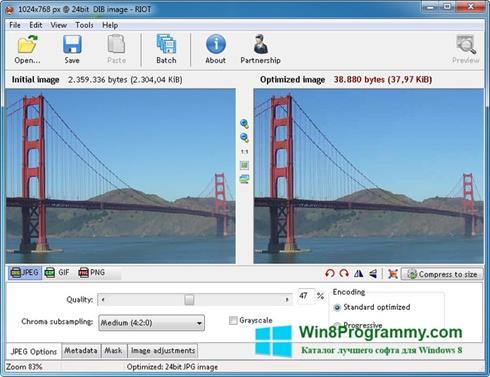Скриншот программы RIOT для Windows 8