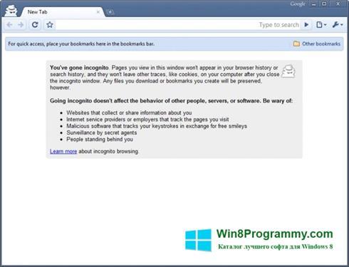 Скриншот программы Google Chrome Beta для Windows 8