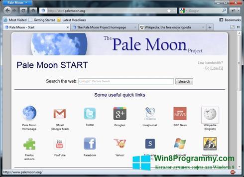 Скриншот программы Pale Moon для Windows 8