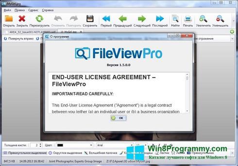Скриншот программы FileViewPro для Windows 8