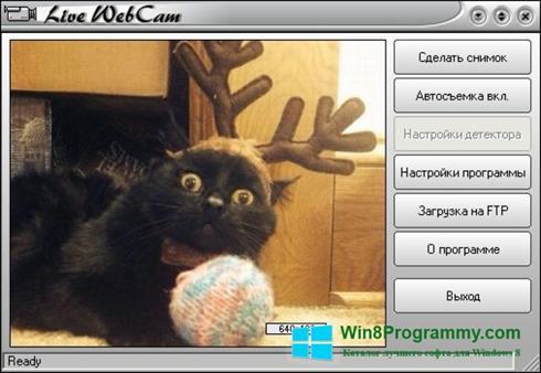 Скриншот программы Live WebCam для Windows 8
