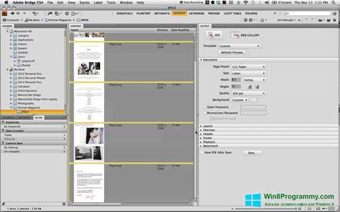 Скриншот программы PDF Combine для Windows 8