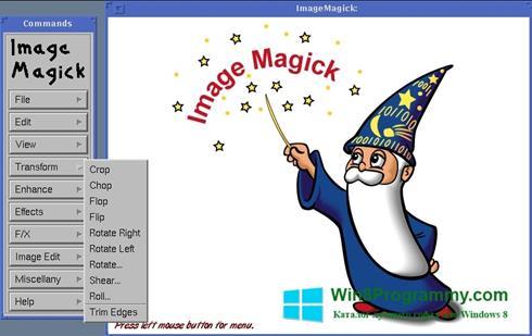 Скриншот программы ImageMagick для Windows 8