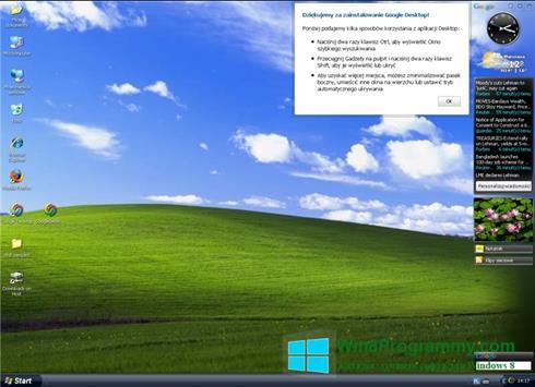 Скриншот программы Google Desktop для Windows 8