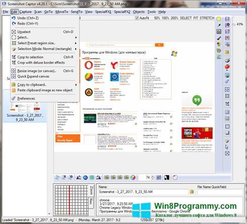 Скриншот программы Screenshot Captor для Windows 8
