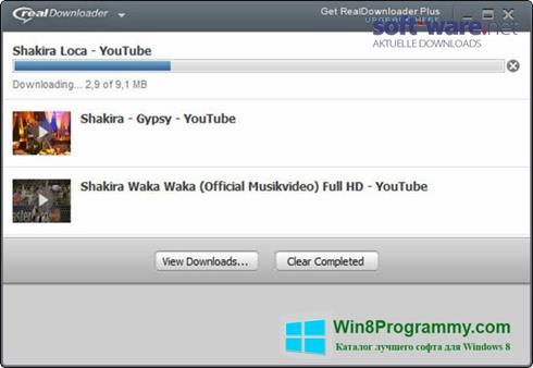 Скриншот программы RealDownloader для Windows 8