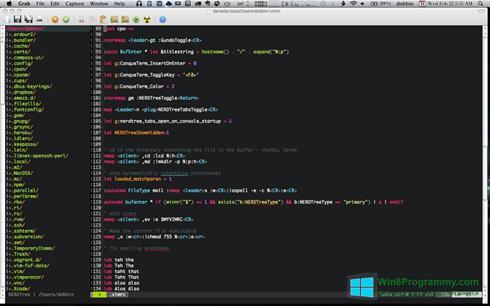 Скриншот программы Vim для Windows 8