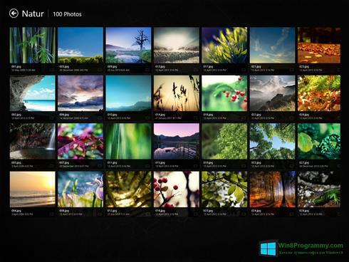 Скриншот программы Picasa Photo Viewer для Windows 8