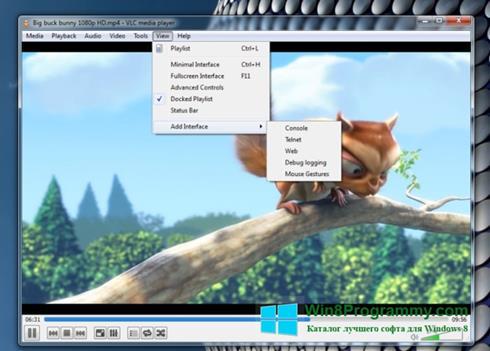 Скриншот программы VLC Media Player для Windows 8